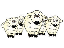 Cute lambs group Royalty Free Stock Photo