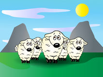 Cute lambs group Stock Images