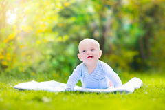 Cute laughing baby in the garden Stock Image