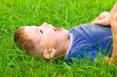 Cute laughing boy Stock Images