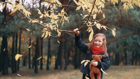Cute, laughing, funny cheerful little girl with teddy bear shakes branch of a tree and yellow autumn leaves fall from it. Funny, laughing, cheerful beautiful stock video footage
