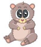 Cute lemur Stock Photography