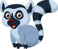 Cute lemur cartoon Royalty Free Stock Photos