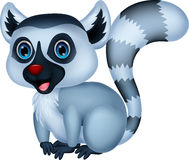 Cute lemur cartoon Stock Image