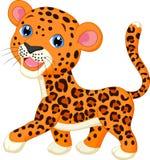 Cute leopard cartoon. Illustration of Cute leopard cartoon Stock Photos