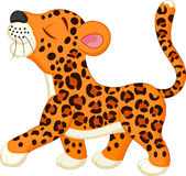 Cute leopard cartoon Stock Images