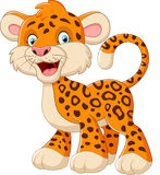 Cute leopard cartoon. Illustration of Cute leopard cartoon Royalty Free Stock Images