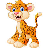 Cute leopard cartoon Stock Image