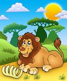 Cute lion with bone Royalty Free Stock Photo