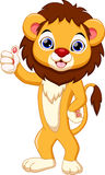 Cute lion cartoon Royalty Free Stock Photography