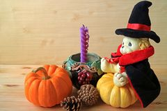 Cute lion doll in wizard costume sitting on bright color ripe pumpkin with pine cones and purple candle. On wooden background royalty free stock photography