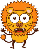 Cute lion feeling surprised and scared Stock Images