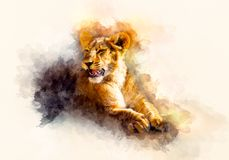 Cute lion and graphivc effect. Softly blurred watercolor background. stock illustration
