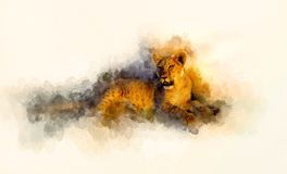 Cute lion and graphivc effect. Softly blurred watercolor background. Stock Photos