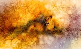 Cute lion and ornaments. Softly blurred watercolor background. Stock Photos