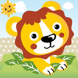 Cute lion Stock Photo