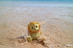 Cute Lion Toy Enjoy Water Bubbles from Sea Wave on his Beach Holidays, Anakena Beach, Easter Island, Chile. South America royalty free stock image