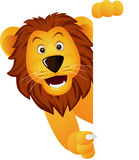 A cute lion and white sign Royalty Free Stock Photos