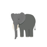 Cute little african elephant isolated on white. Baby animal african zoo vector illustration. Stock Images
