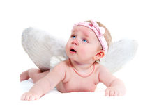 Cute little angel Stock Images