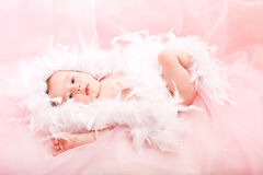 Cute little baby Royalty Free Stock Photo