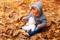 Cute little baby in autumn park. Sweet baby boy having fun in autumn park, sitting on the ground covered with dry leaves in the forest, little baby playing with Stock Images