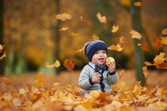 Cute little baby in autumn park Royalty Free Stock Images