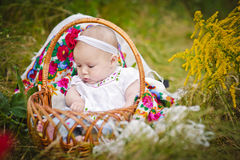 Cute little baby in basket Stock Images