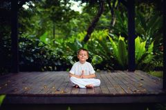 Cute little baby boy, kid meditating in rainy forest park, sitting on wooden decks. Among tropical plants stock images