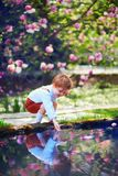 Cute little baby boy puts his hand into the pond water in spring garden. Cute little baby boy puts his hand into the pond water in spring blooming garden royalty free stock photography