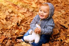 Baby boy in the autumn park. Cute little baby boy sitting on the ground covered with dry leaves in the park, little cheerful child playing with soft toy in the Royalty Free Stock Image