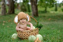 Cute little baby boy in suit of rabbit sitting on the grass in basket with cabbage and carrot royalty free stock images