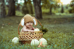 Cute little baby boy in suit of rabbit sitting on the grass in basket with cabbage and carrot stock photo
