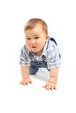 Cute little baby boy on a white Royalty Free Stock Image