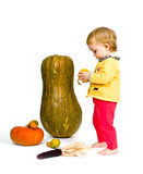 Cute little baby with colorful pumpkins Stock Photography
