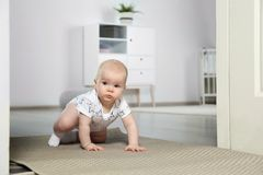 Cute little baby crawling on carpet. Indoors royalty free stock photography
