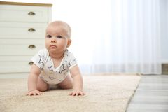 Cute little baby crawling on carpet indoors royalty free stock image