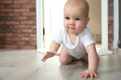 Cute little baby crawling on floor indoors. Space for text stock photos