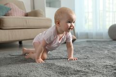 Free Cute Little Baby Crawling On Soft Carpet Stock Images - 162513264
