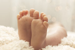 Cute little baby feet Stock Photography