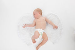 Cute little baby flying with angel wings. Stock Photos