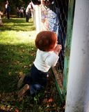 Cute little baby with ginger hair watching through the fence sta. Nding on knees alone among adult people around Stock Photo
