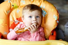 Cute little baby girl eating bread. Child eating for the first time piece of pretzel. Royalty Free Stock Image