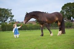 Cute little baby girl feeding big horse on ranch stock photos