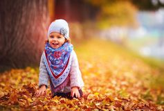 Cute little baby girl having fun in autumn leaves Stock Photos