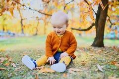 Cute little baby girl having fun on beautiful fall day stock photo