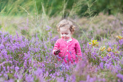 Cute little baby girl with purple heather flowers Stock Photos