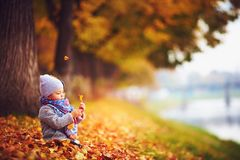 Cute little baby girl sitting in autumn fallen leaves Stock Image