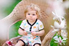 Cute little baby girl sitting on big chair in garden. Beautiful happy smiling toddler with blooming pink magnolia tree. On background. Healthy child enjoying royalty free stock photo