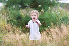 Cute little baby girl in a white dress playing in a heath park Stock Photography